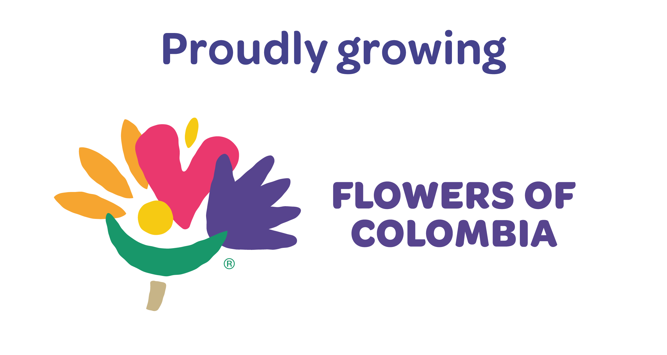 Flowers of Colombia